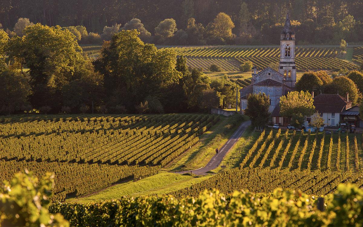 Bordeaux Winery