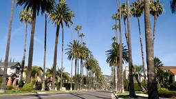 Beverly Hills car hire