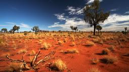 Hotels near Ayers Rock Connellan airport