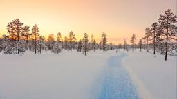 Lapland holiday rentals