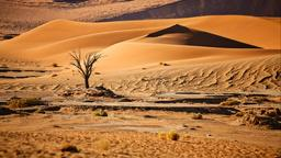 Find cheap flights to Namibia