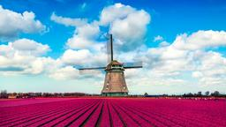 Find cheap flights from London to the Netherlands