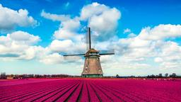Find cheap flights from Norwich to Netherlands