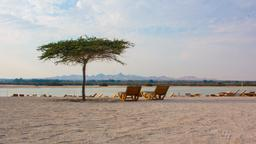 Hotels near Sir Bani Yas Island airport