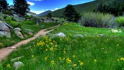 Rocky Mountain National Park holiday rentals