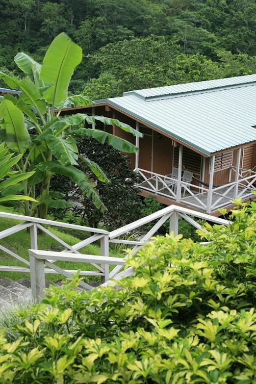 Casa Grande Mountain Retreat - Utuado
