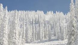 Cheap Hotels in Steamboat Springs from £56